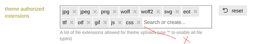 add css to theme authorized extensions